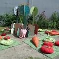 Pomelo dans son jardin par un beau jour d'été.