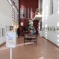 Mise en place de l'exposition dans le hall de la médiathèque de Carros (06)