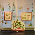 Illustrations originales encadrées présentées sur grille, jalonnées des décors en carton peint, à la Médiathèque de Villeurbanne Tonkin (69)